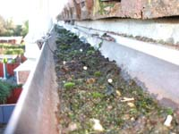 Accredited Roofing Blocked Gutters And Gullies In